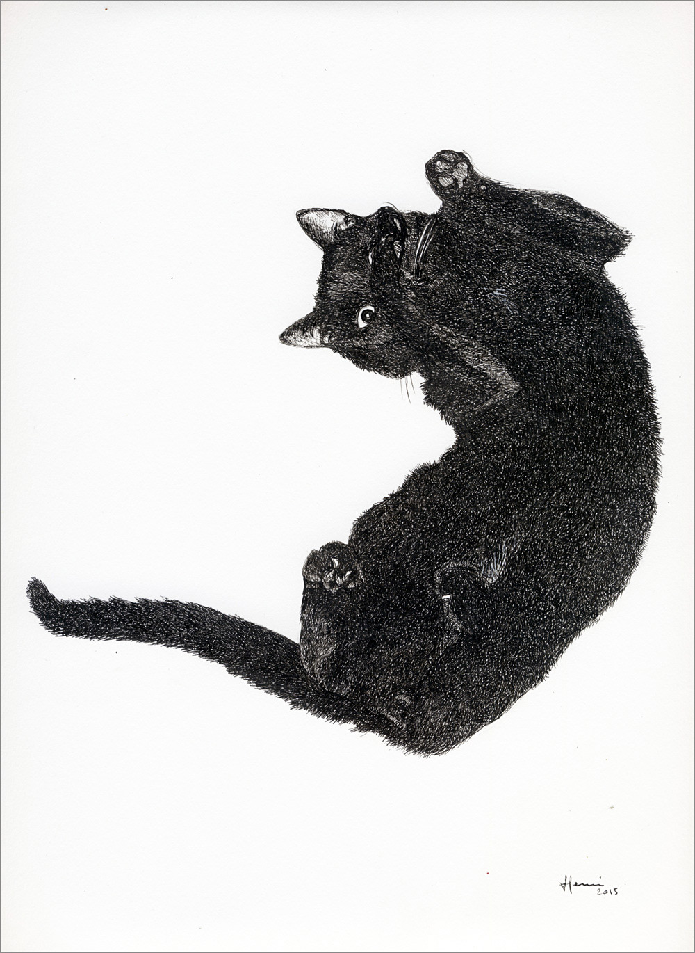 Henri Blanc dessins à la plume - L'invitation au câlin chat cat ink drawing