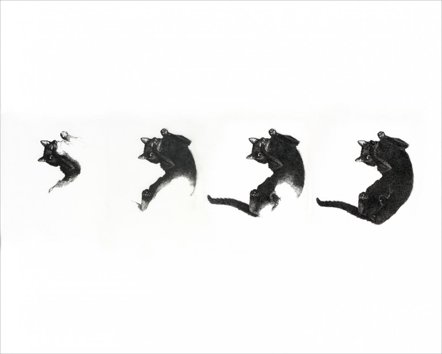 Henri Blanc dessins à la plume -  ink drawing La naissance d'un Arnold voluptueux