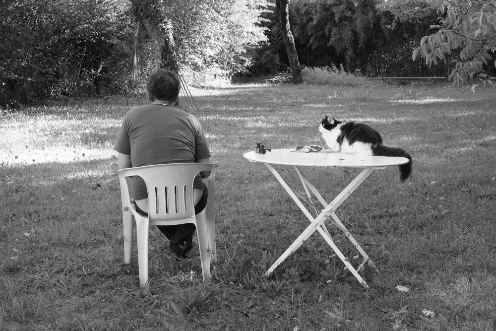 Henri Blanc dessins à la plume - Sous le regard de Meiko chat cat inkdrawing