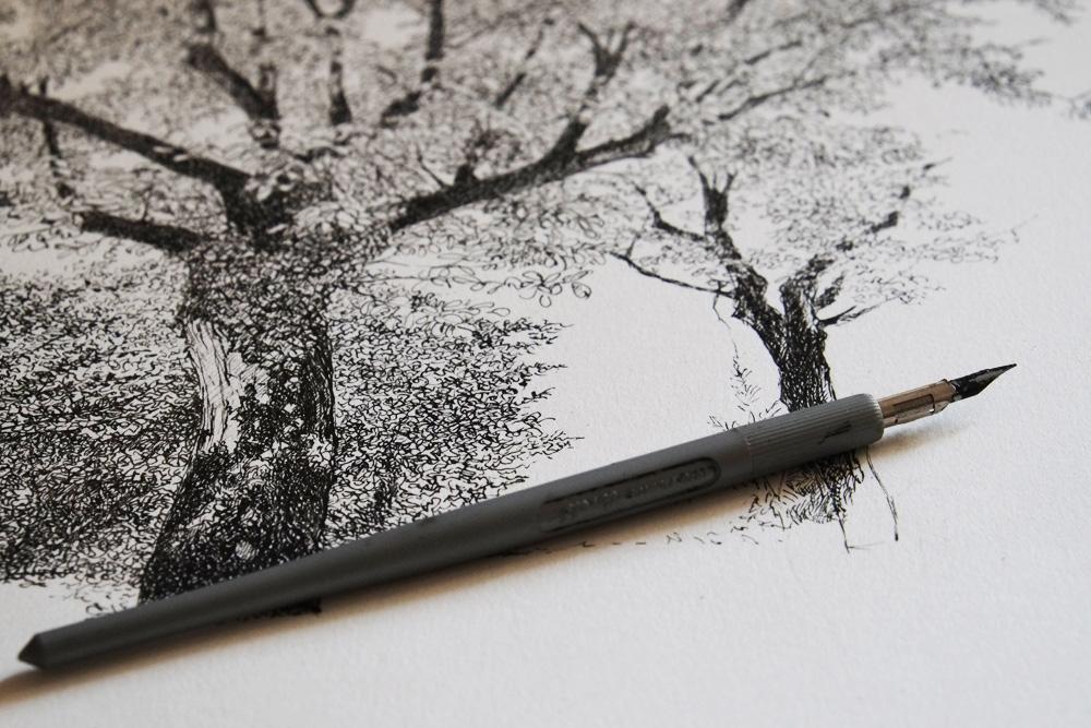 Henri Blanc dessins à la plume - Ma plume à dessin