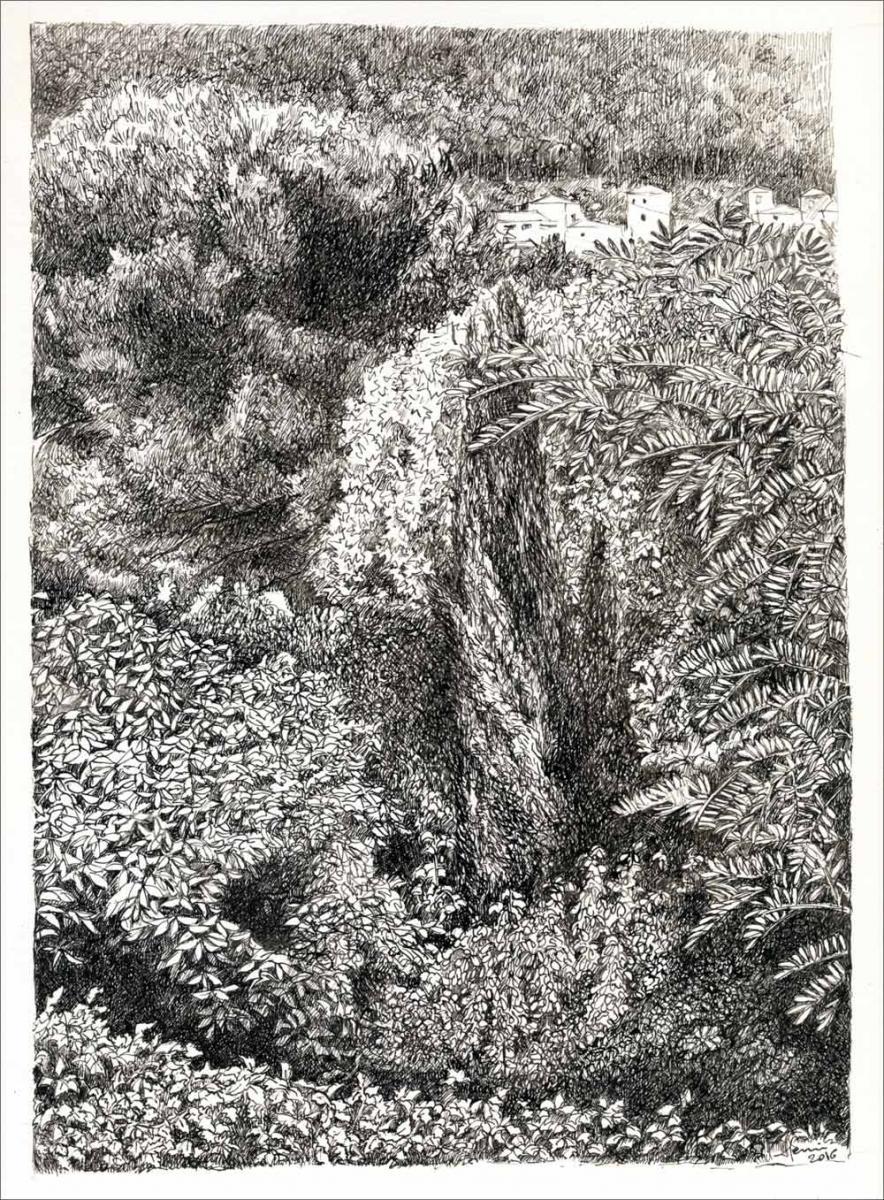 Henri Blanc dessins à la plume - Le vent à la Penne arbre tree ink drawing