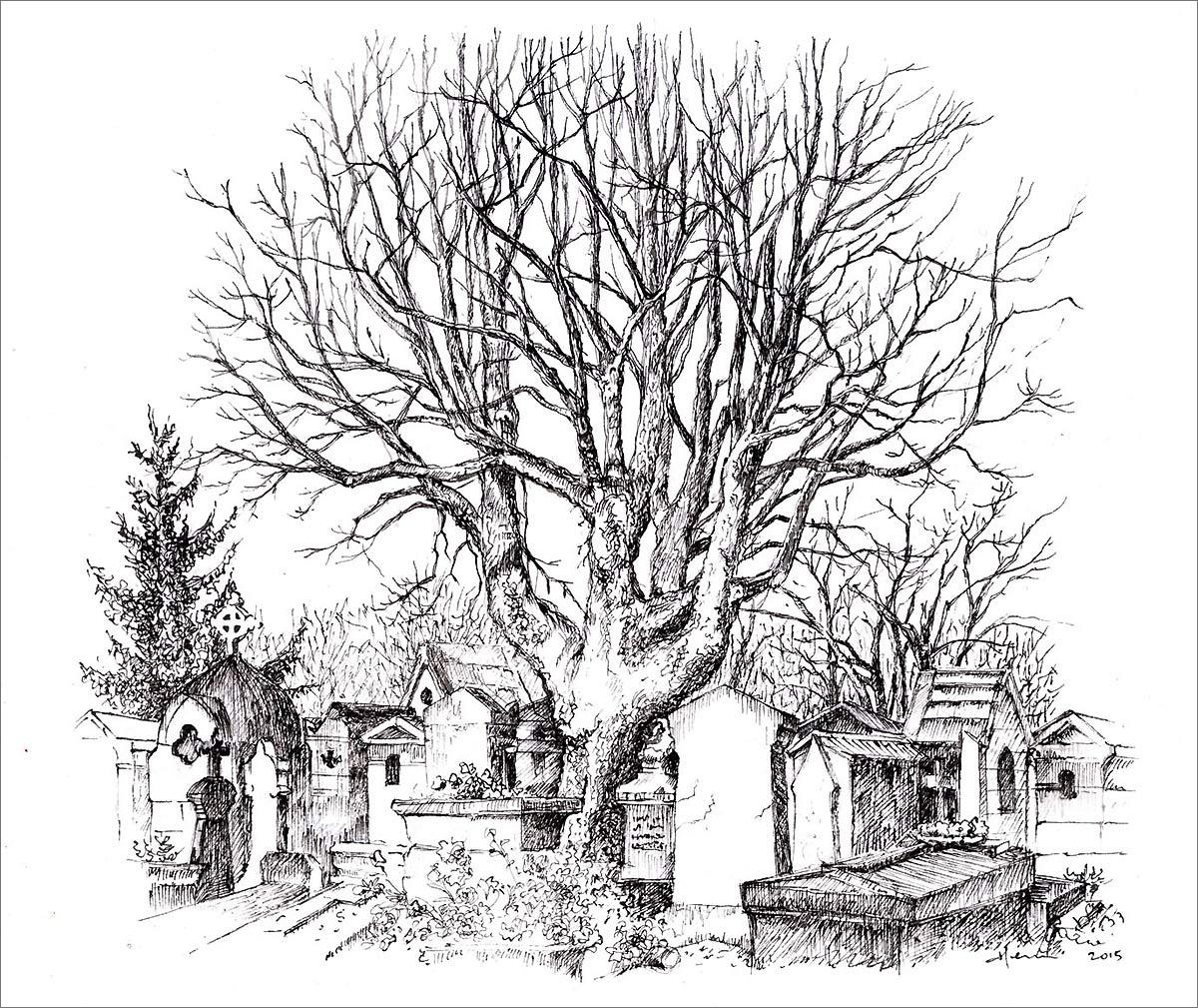 Henri Blanc dessins à la plume - tree ink drawing cimetiere Montmartre Paris arbre