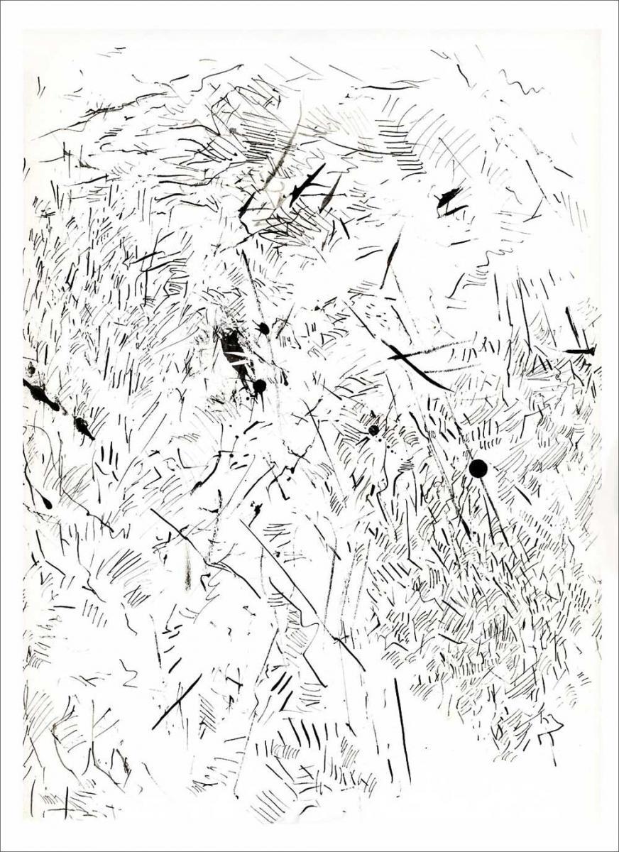 Henri Blanc dessins à la plume - Vibrations de midi provence ink drawing