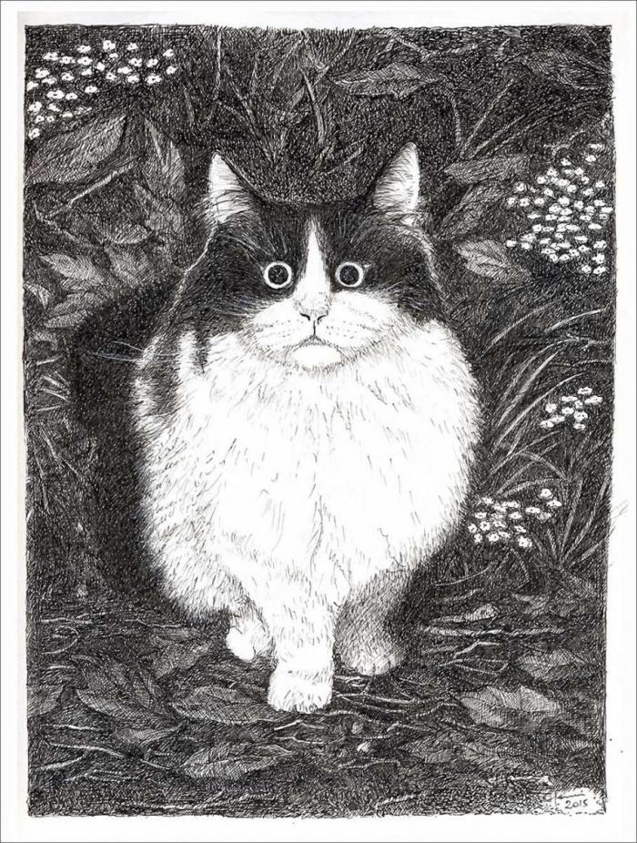 Henri Blanc dessins à la plume - Meiko chat cat ink drawing