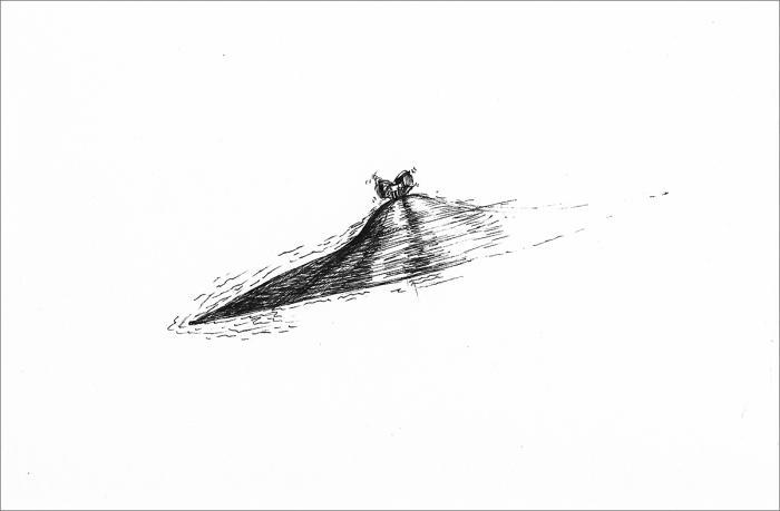 Henri Blanc dessins à la plume - Whiplash ink drawing