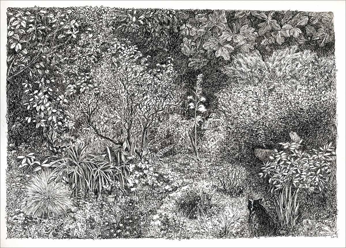 Henri Blanc dessins à la plume - Le jardin de Surzur arbre ink drawing